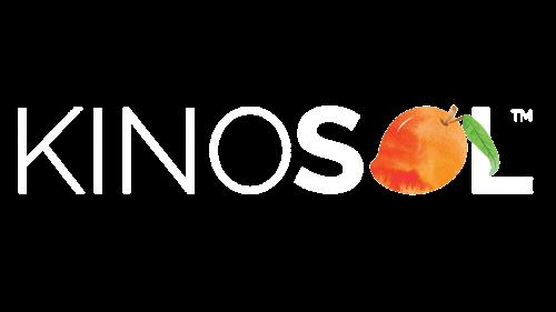 KinoSol